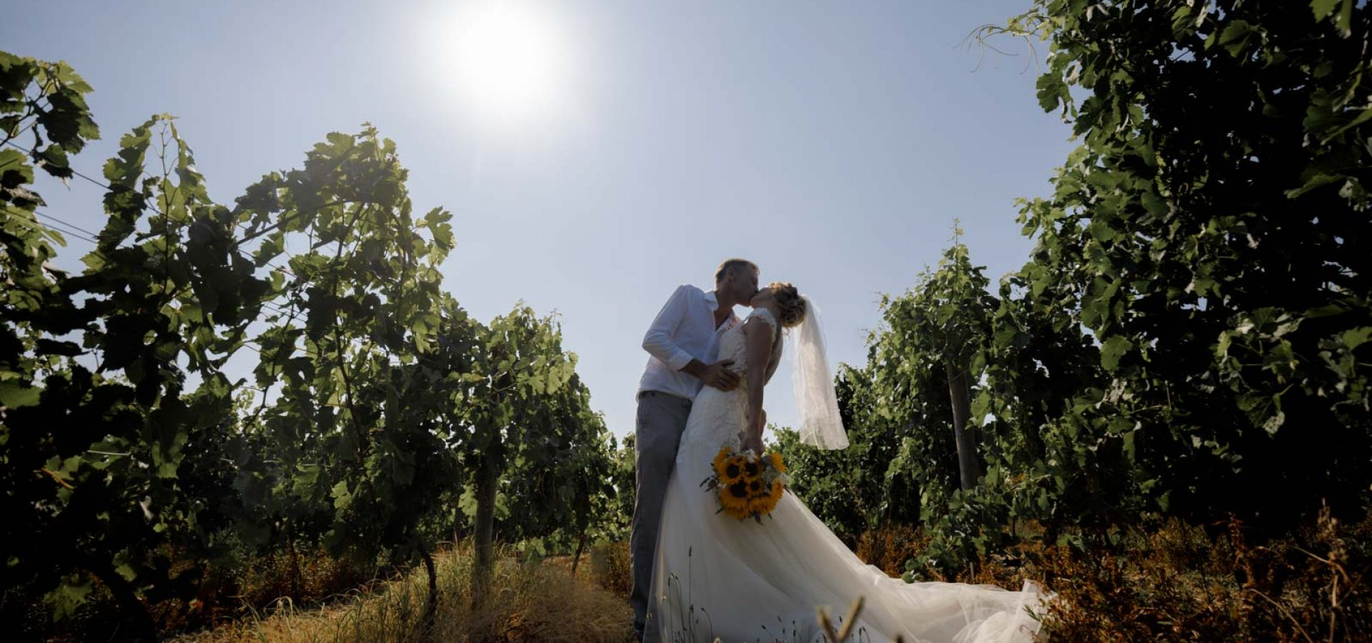 Couple kiss on wedding day in vineyards